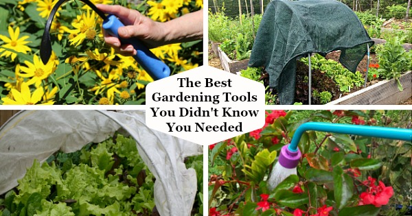 The Best Gardening Tools You Didn't Know You Needed