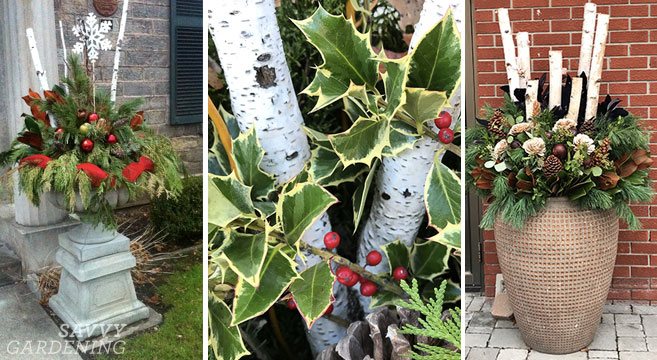 Outdoor Winter Container Garden Ideas And Inspiration