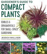 Compact plants for small gardens