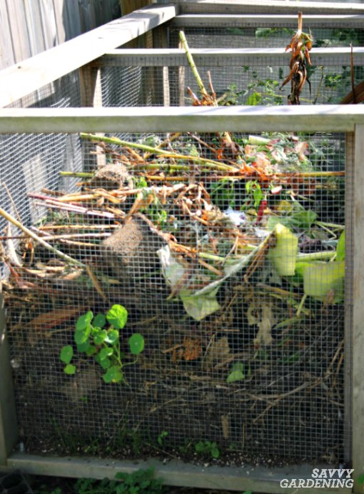 Build a wire mesh compost bin.