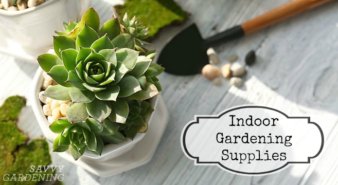 Indoor gardening supplies: Houseplant gear for everything from potting, watering, and fertilizing to projects