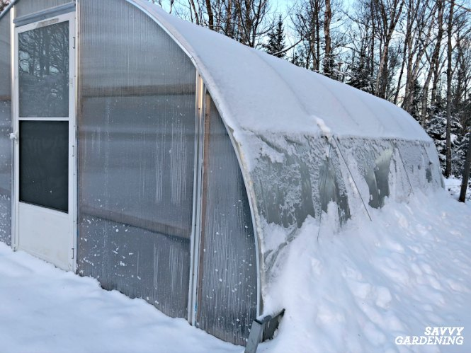 Remove snow from the top of a greenhouse