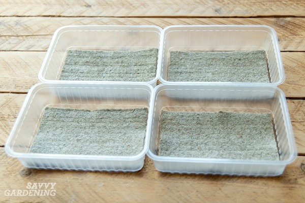 Grow mats are a great choice for growing microgreens without soil.