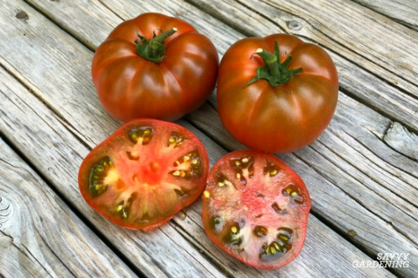 Tasmanian Chocolate tomatoes are great for containers