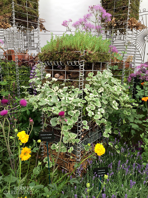 Pollinator palaces at the RHS Chelsea Flower Show