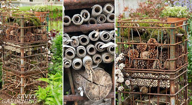 Build a pollinator palace for your garden