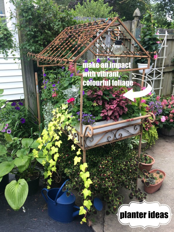 A great planter idea is to add vibrant foliage