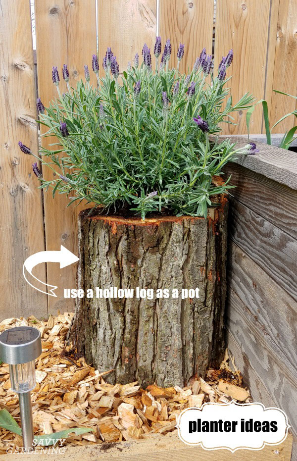 For unique planter ideas consider using natural materials
