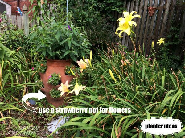 Add pots to a garden, among the perennials.