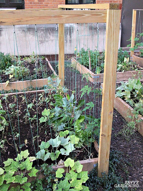 wood and string trellis