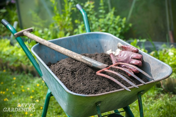 Spread compost over your grass once a year to improve the health of your lawn.