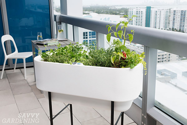 The Nest, a self watering planter from Crescent Garden
