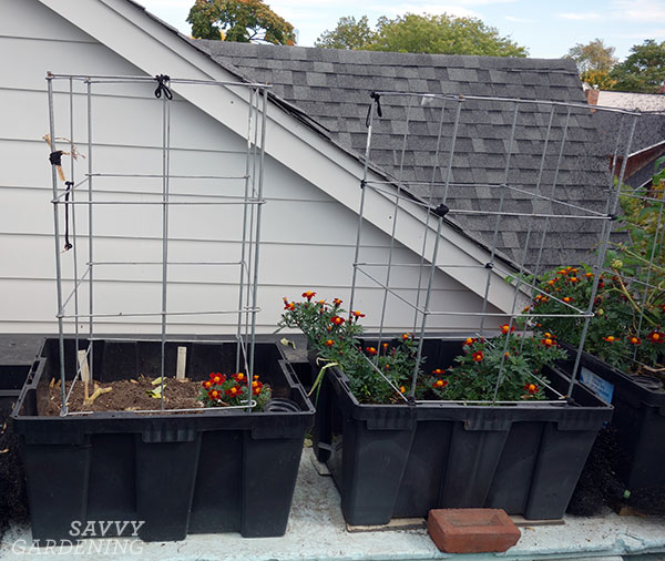 rooftop sub-irrigated planters