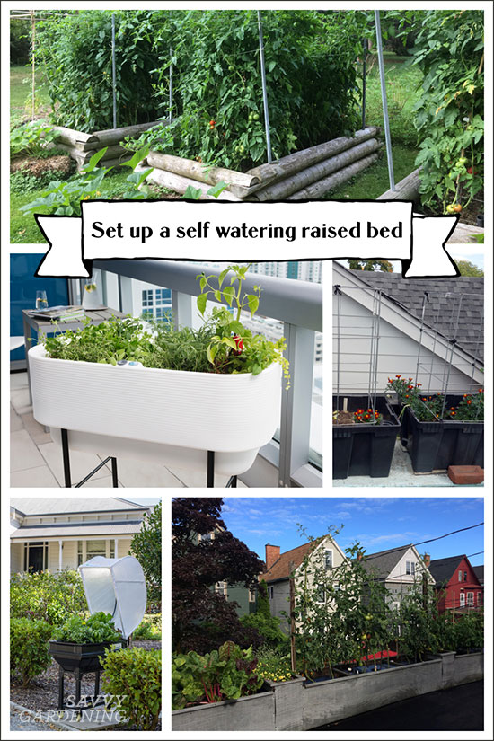 learn about how self watering raised beds work and how you can buy or DIY your own.