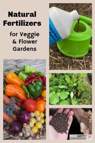 The best way to feed your garden is to use these natural fertilizers