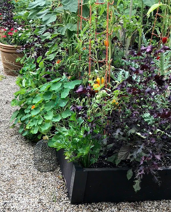 one-foot-high raised bed with corners