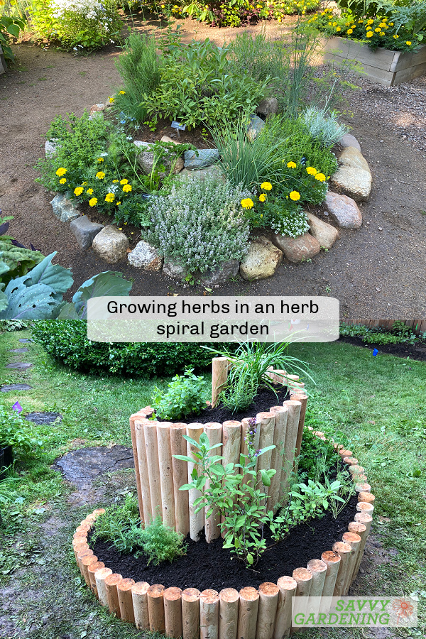 Learn how to garden in an herb spiral