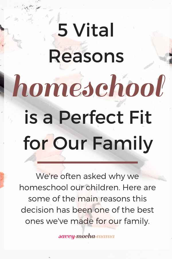 We're often asked why we homeschool our children. Here are some of the main reasons this decision has been one of the best ones we've made for our family. #homeschool #homeeducation #homemaker #schoolathome #christianparenting #parenting #classicaleducation #traditionaleducation #charlottemason #howtohomeschool