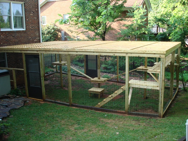 Cat Enclosures cat enclosures Pinterest Cat