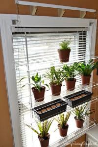 Enhance Your Window's View with Beautiful Views Window ...
