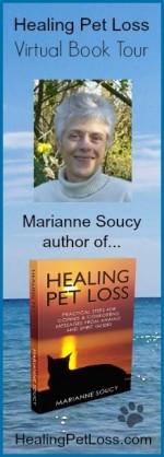 Healing Pet Loss Book Tour Banner 2014