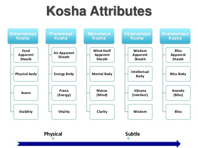 Kosha Attibutes