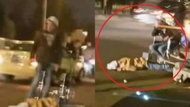 Photo of القتل العمد لقاتل شقيقته في شارع الجامعة .. تفاصيل جديدة