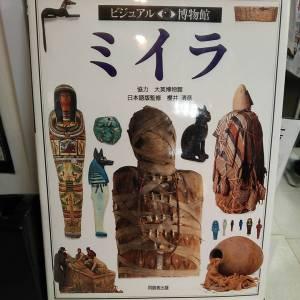 ミイラ|古書買取り澤口書店
