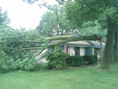 Storm Damage Service: Wind damaged tree on house