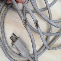 examine extension cords