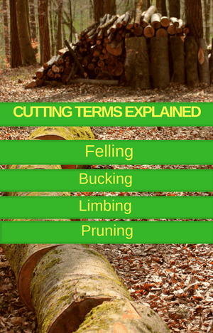 felling bucking pruning and