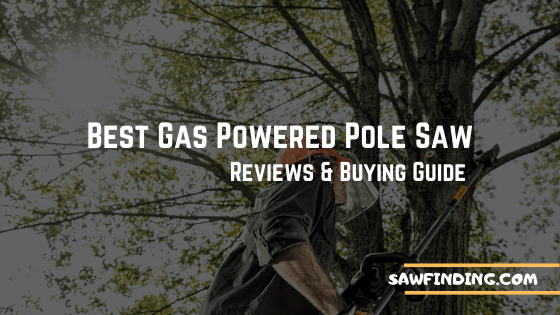 Best gas pole saw reviews and buying guide