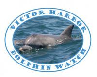 logo-victor harbor dolphin marine conservation