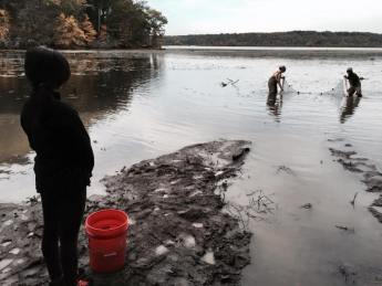 High school students seining for fish!