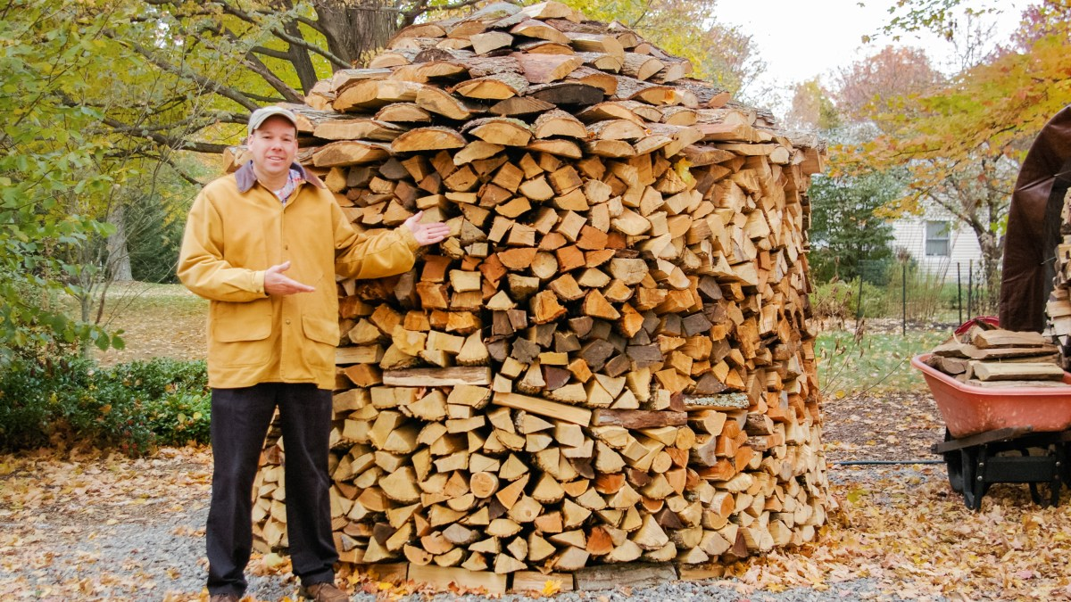John and Holzhausen wood pile
