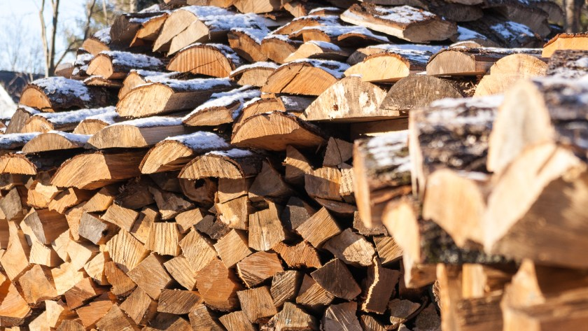 Twin holz hausen wood piles