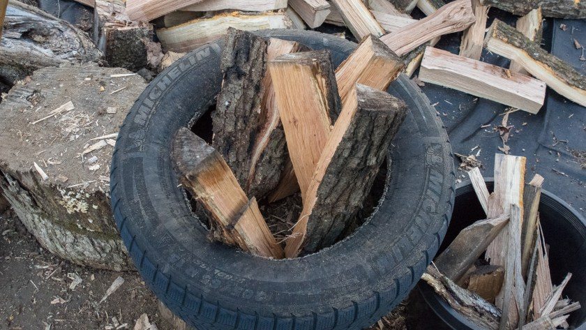 Fresh Firewood Splits in the Splitting Tire