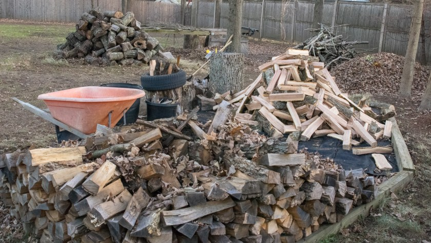 Saws and Splitters Wood Pile