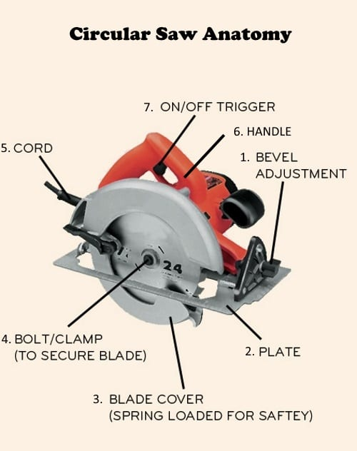 Bench Mounted Circular Saw Safety
