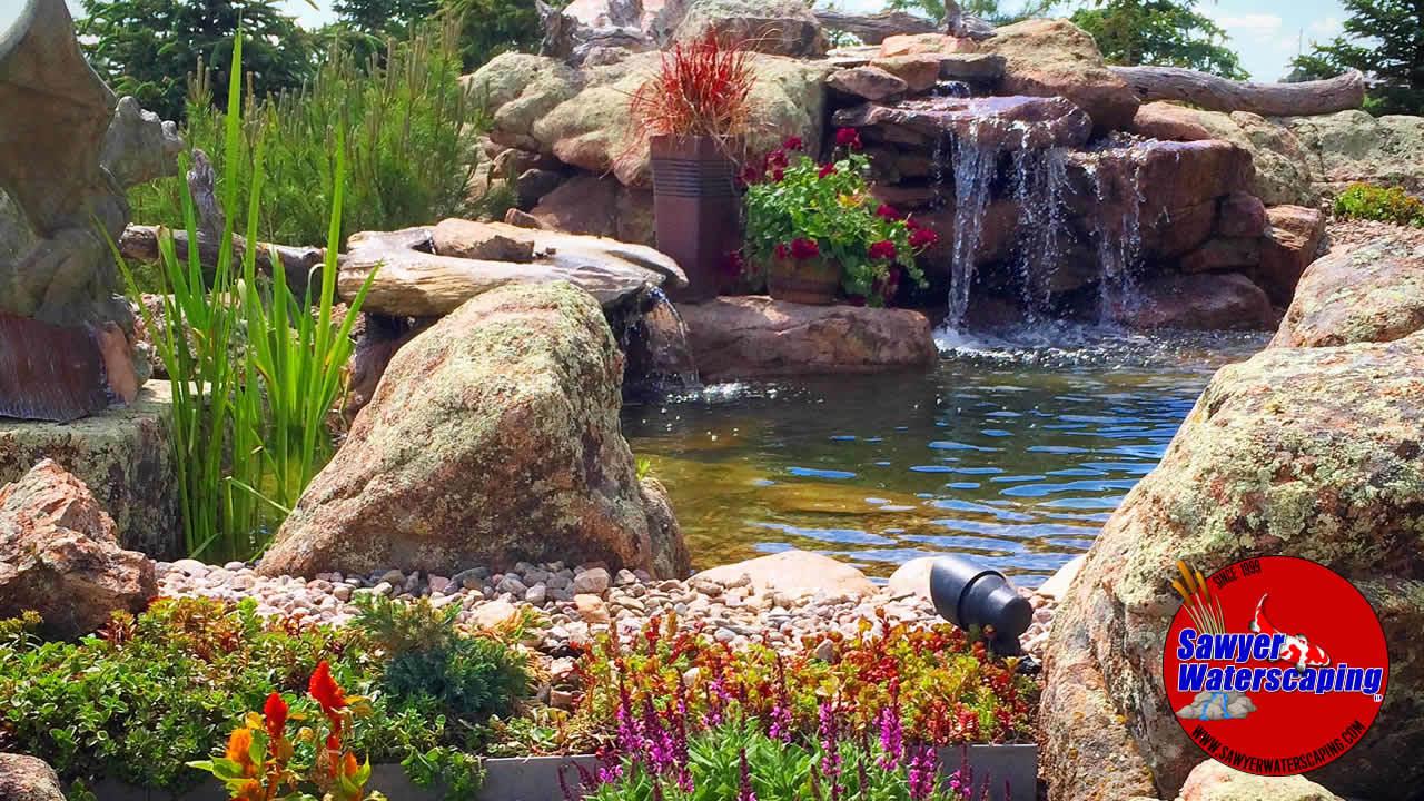 Oasis Pond