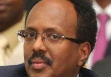 Mogadishu Administration Undermined The UAE Efforts In Somalia