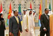 Saudi-UAE Look To Africa