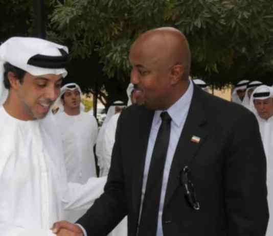 Somaliland Listed As UAE's Biggest FDI Recipient
