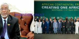 Somaliland Participates In The Niger AfCFTA Summit