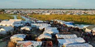 Transnational Civil Society And Diaspora Activism In Somaliland, South Sudan And Iraqi Kurdistan