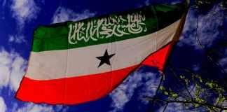 Somaliland Passing The Statehood Test