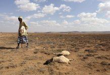 Scientists Predict El Nino In 2020 Based On Earlier Warning Method