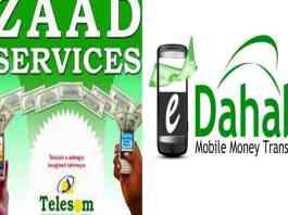 Somaliland Adopts E-Shilling Payment Service For Civil Servants