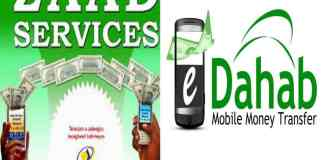 Somaliland Adopts E-Shilling Payment Service For Civil Servants
