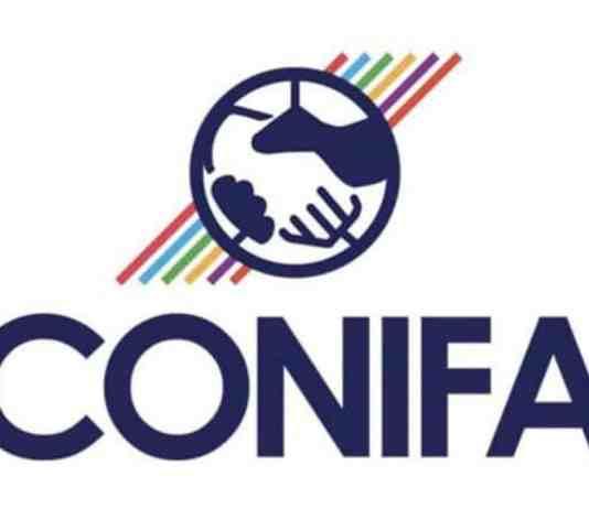 CONIFA 2020 — Organization And Teams